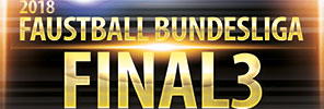 Faustball Bundesliga Final3